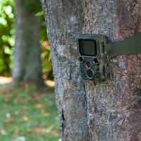 Wildkamera Mini Full HD 16 MP